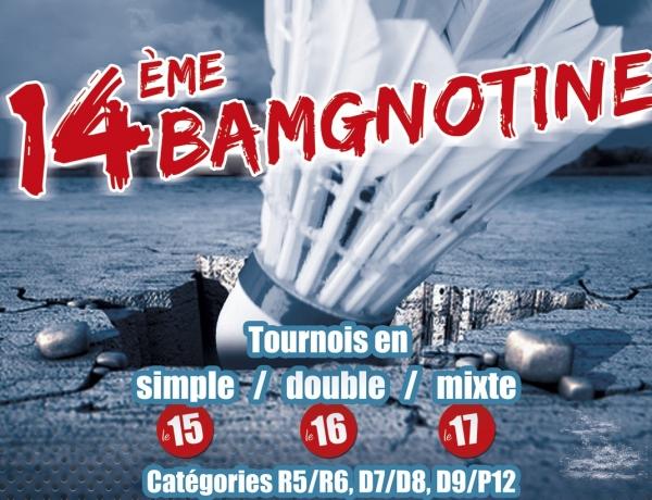 Tournoi National du BMV : 14ème BAMGNOTINE les 15,16 et 17 Avril 2017  Plus que quelques jours pour s'inscrire…